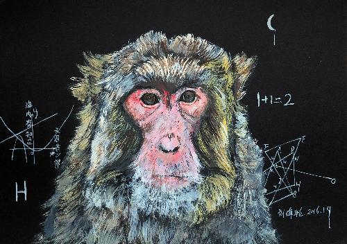 黑板前的猴子教授