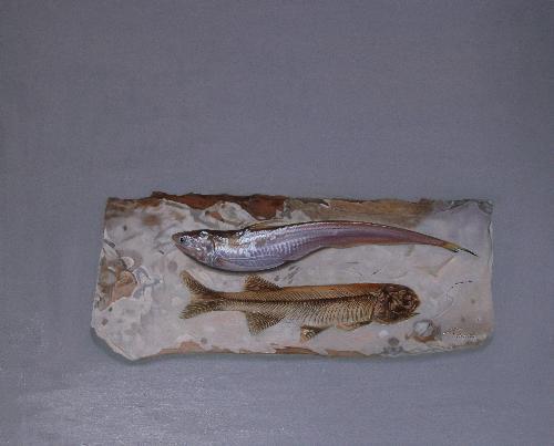 陰陽魚之四